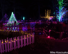 915A6321 (mikekos333) Tags: 2018 december christmas christmaslights coastalmainebotanicalgardens boothbay