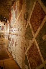 Walls, angle, Siena Cathedral Crypt (Tatiana12) Tags: italy siena sienacathedral crypt meetingrooms art architecture