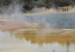 Champagne Pool Steam (fantommst) Tags: nz newzealand rotorua geothermal thermal champagne pool waiotapu sacred waters lisaridings fantommst minerals springs sinter bayofplenty