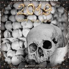 We wish everyone a safe and Happy New Year. See you in 2019! There is  lots more to come! So make sure you turn on post notifications, click  link in BIO to follow along on our journey, and sign up on our mailing  list at: ☩ sedlecossuary.mechanicalwhispe (Sedlec Ossuary Project) Tags: sedlecossuaryproject sedlec ossuary project sedlecossuary kostnice kutnahora kutna hora prague czechrepublic czech republic czechia churchofbones church bones skeleton skulls humanbones human mementomori memento mori creepy travel macabre death dark historical architecture historicpreservation historic preservation landmark explore unusual mechanicalwhispers mechanical whispers instagram ifttt