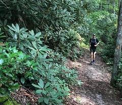 41510395_10218521959858878_7619667300483858432_n (stephensjacob) Tags: ultrarunner ultrarunning trailrunning trailrunner hiking appalachian