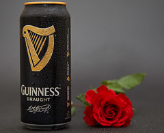 The age of romance isn't dead (Bernie Condon) Tags: guinness stout can draught beer studio flash black gold rose red flower