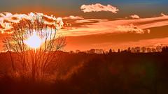 Sonnenuntergang (joachim.kracher) Tags: sunset sonnenuntergang fürstenfeld österreich austria steiermark sryria abend evening outdoor rot red undeutlich gegenlicht contrejour tele sony dxformat milchig 169