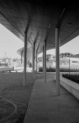 C09_F80_20190204_026_JPEG 2000 (Domenico Cichetti) Tags: milano citylife olympus olympusxa studional fomapan100 monocrome bw blackwhite blackandwhite bn argentique selfdevelope architecture