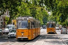 1445 [BKV] (wylaczpantedlugie) Tags: bkv budapest ganz gcsm2