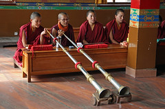 266. Interior, Nagi Gompa (Nunnery), Shivapuri Nagarjun National Park, Kathmandu, Bagmati State, Nepal (Jay Ramji's Travels) Tags: nepal kathmandu shivapurinagarjunnationalpark bagmatistate northkathmanduvalley nagigompa nunnery buddhism buddhist religious placeofworship monks women