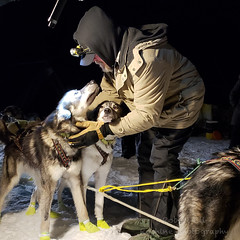 20190207_005038-Edit.jpg (Roshine Photography) Tags: yukonquest dawsoncity dogyard dogcare 36hourrestart winter huskies environmental yukonterritory snow yukon canada ca