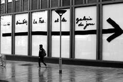 Going to the wrong way (pascalcolin1) Tags: paris13 homme man mur wall pluie rain reflets reflection flèche arrow photoderue streetview urbanarte noiretblanc blackandwhite 50mm canon50mm canon
