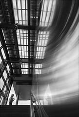 F_MG_8147-1-BW-Canon 6D2-Sigma 12-24mm-May Lee 廖藹淳 (May-margy) Tags: maymargy bw 黑白 人像 逆光 剪影 樓梯間 玻璃 窗戶 不銹鋼板 反射 街拍 天馬行空鏡頭的異想世界 線條造型與光影 心象意象與影像 幾何構圖 點景 點人 台灣攝影師 台北市 台灣 中華民國 fmg81471bw portrait backlighting stainless steel wall panels windows escalator staircase mirroredimages silhouette humaningeometry humanelement taiwanphotographer taipeicity taiwan repofchina canon6d2 sigma1224mm maylee廖藹淳 streetviewphotographer linesformandlightandshadow mylensandmyimagination naturalcoincidencethrumylens