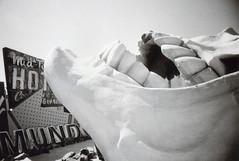 Ricoh R1S Las Vegas Neon Museum 7 (▓▓▒▒░░) Tags: ricoh r1 r1s bw black white monochrome point shoot compact japan las vegas lv nevada city life neon museum restored sign motel signage casino bulb sun shadow light dark color retro classic vintage antique 35mm film camera style design art architecture glam astro jet mid century analog mechanical