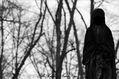 Faceless.... (darkangel1910) Tags: friedhof fotografie friedhöfe darkness dark düster dunkel death gothic graveyard grabstätte grabmal gedenksteine grabmäler gravestones gottesacker germany deutschland grab grief grabstein europa europe erinnerung erinnerungenfesthalten faceless leidenschaft liebezurfotografie love liebe lightandshadow lichtundschatten licht light photography passion photo pastdays pictures stille momente schwarzundweis blackandwhite begraafplaats bildhauerkunst kunst kunstwerk kalt winter wintertime winterstimmung cemetery cemeteries cimetière cimitero creepy cold silent moments morte arte art ausdemherzenfotografiert silenzio statue zeitlos vergänglichkeit mystisch magical monument magic memories