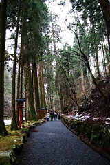 SDQ_1099 (koyaman3422) Tags: 京都 kyoto sigma sdquattro 1770mm 貴船神社