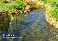 PondPack CONNECT Edition V10 Update 2 Free Download (rizkyfrc2) Tags: pondpack connect edition v10 update 2 free download