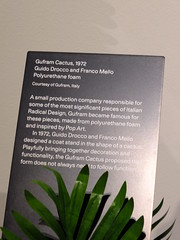 Cactus and Frond (failing_angel) Tags: 091118 london kensingtonchelsea kensington designmuseum homefutures soil homeofthefuture