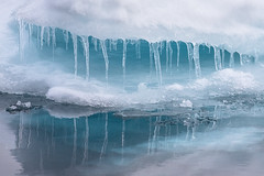 Icicles in Blue (alicecahill) Tags: arctic svalbard norway landscape ©alicecahill travel scandinavia europe origoexpedition ice