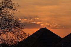 Addlestone sunset (20190328) (Graham Dash) Tags: addlestone sunsets sunsetsaddlestone 2019pad