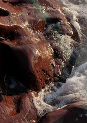 Lapping Ashore (peterkelly) Tags: digital canon 6d northamerica canada newfoundlandlabrador cavendish trinitybay water foam bubbles rock rocky shore coast