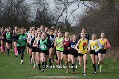 DSC_0120 (running.images) Tags: xc running essex schools crosscountry championships champs cross country sport getty