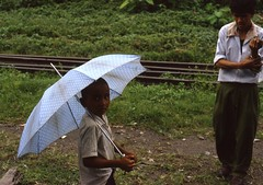 Darjeeling area (Paolo Levi) Tags: umbrella darjeeling westbengal india toytrain rail canon ftb fd 50mm ilfochrome