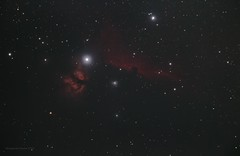 Horsehead and Flame nebulae (Themagster3) Tags: horsehead flame nebula nebulosity nightsky astronomy astrophotography