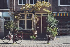 (awdylanis) Tags: amsterdam netherlands storefront tattoo tiger joristattootattooshopamsterdam joristattootattooshop door window frontdoor