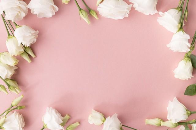 Обои белый, фон, Цветы, Эустома картинки на рабочий стол, раздел цветы - скачать