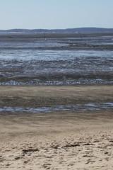 Succession de matières,  Andernos-les-Bains, Gironde, Aquitaine, France. (byb64) Tags: aquitaine aquitania 33 france francia eu europe europa andernoslesbains andernos gironde bassindarcachon bassin gironda bassemer lowtide chenal channel canale canal contrejour gegenlicht paysage paisaje landscape paesaggio landschaft vue view vista veduta paysdebuch akitania aquitanien frankreich gascogne gascony gascona gasconha atlantique atlanticocean océanatlantique océanoatlántico mer mare mar sea corpsmort jetée maréebasse