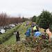 Ayrsley_Tree_Planting_2019_ (11)