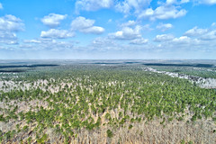 Brendan T. Byrne State Forest, NJ (WabbyTwaxx) Tags: brendan byrne state forest new jersey pine barrens aerial view drone