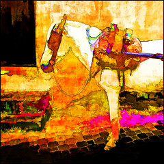 the white horse II (j.p.yef) Tags: peterfey jpyef yef morocco marokko street animals horse africa digitalart square photomanipulation h aoi elitegalleryaoi bestcapturesaoi