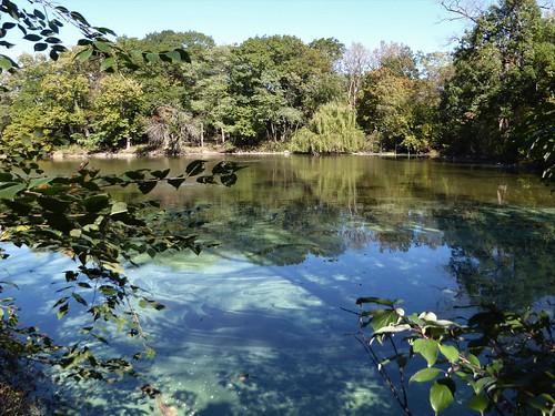 Brookfield, IL, Brookfield Zoo, Pond Landscape