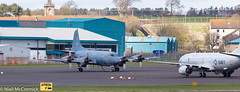 Royal Canadian Air Force Lockheed CP-140 Aurora (Niall McCormick) Tags: warrior 191 glasgow prestwick airport egpk pik joint maritime patrol aircraft mpa royal canadian air force lockheed cp140 aurora