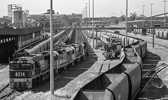 Snaking (OzzRod) Tags: pentax k1 hdpentaxdfa28105mmf3556 railway trains locomotives wagons portwaratah coalloader newcastle monochrome blackandwhite dailyinapril2019
