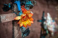 Buried in the Highlands (shapeshift) Tags: 50mm 50mm18 d700 bokeh cemetery cross cusco cuzco davidpham davidphamsf fakeflowers graves highlands mudbrick nikon nikon50mm peru shapeshift southamerica theamericas travel yuncaypata qosqo pe