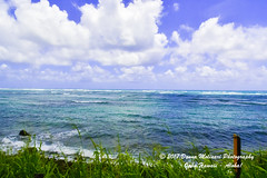 OAHU-HAWAII_1D50847-01 (Donna Molinari Photography) Tags: sanjose ca usa