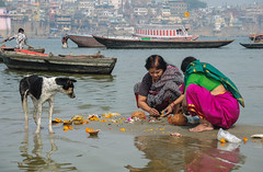 Ritual at the Gangesbank (Dick Verton ( more than 13.000.000 visitors )) Tags: ritual wome dog boats ganges varanasi india asia traveling