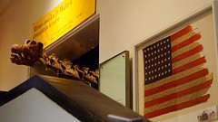 American Museum of Natural History (Montauke) Tags: amnh americanmuseumofnaturalhistory naturalhistorymuseum museum manhattan newyorkcity nyc a7s sonya7s sonyzeisssonnar55mmf18