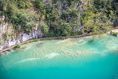 Plitvice (Roger_T) Tags: 2018 canon5dmarkiv water plitwitzerseen forest canon lakes kroatien nature canonef2470mmf28liiusm outdoor plitvice wald plitvicelake croatia