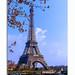 « Dans leur idée, la tour Eiffel était ce qu'il y a de plus beau au monde. Moi je crois que tout ce que les gens font est beau. » Béatrix Beck