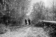Winter Walk (Matthew_Hartley) Tags: winter snow snowy blackandwhite bw monochrome mono helmshore haslingden rossendale lancashire northwest england uk britain panasonic gm1 microfourthirds m43 mft vario 1232 1232mm