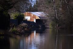 Basingstoke Canal Ash Vale 22 February 2019 018 (paul_appleyard) Tags: basingstoke canal ash vale february 2019 rusty boathouse reflection reflected water still calm