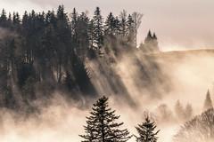 A9901770_s (AndiP66) Tags: menzberg nebel fog winter january januar luzern lucerne schweiz switzerland sony alpha sonyalpha 99markii 99ii 99m2 a99ii ilca99m2 slta99ii tamron tamronspaf70300mmf456diusd tamron70300mm 70300mm f456 amount andreaspeters