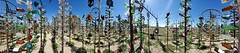 Panoramic (cjacobs53) Tags: jacobs jacobsusa route 66 route66 national trails highway elmers bottle ranch tree rust elmersbottletreeranch oro grande orogrande san bernardino county 119picturesin2019 annual scavenger photo hunt yearly picture