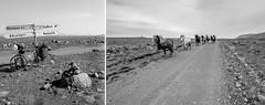 Über Stock und Stein (Panasonikon) Tags: panasonikon nikonf80 kleinbild analog island iceland bw fahrrad bicycle pferde horses piste schotterweg highlands hochland f35 kjalvegur kjölur