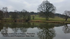 Row Ponds (Week 27/52) (Mick PK) Tags: rowponds hardwick hardwickpark nationaltrustbolsover district derbyshire england uk 2019 newyear pond water reflection tree trees fence park 5252 cameraphone hdr samsunggalaxys5 samsung galaxy s5 green grass hardwickoldhall englishheritage ngc