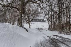 NS 21T DSC_1146 (John Troxler) Tags: snow winter train railroad norfolk southern road trees