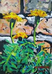 flowers in acrylics (dibujandoarte) Tags: flores artlovers flower arte plant acrilicos painting photo summer backyard botanical art botanicalart acrylic pintura pequeña flowers boceto marygold cempasuchil
