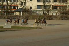Berlin Trabrennbahn Mariendorf 27.1.2019 (rieblinga) Tags: berlin tempelhof mariendorf trabrennbahn sport renntag 2712019 3 rennen