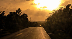 Countryside around the Camajuaní road. (lezumbalaberenjena) Tags: camajuani camajuaní cuba villas villa clara campo countryside 2019 carretera road sunset atardecer