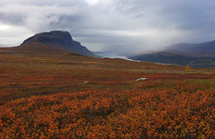 2018 / Day 9 / Tundra plains between Sitojaure and Saltoluokta (Northern Adventures) Tags: sarek sareknationalpark sápmi sapmi lapland lappi lappland lapp sweden sverige north deepnorth autumn fall september walk walking trek trekking track tracking wandering trail path footpath journey exploration wild wilderness outdoors scenery scenic landscape kungsleden